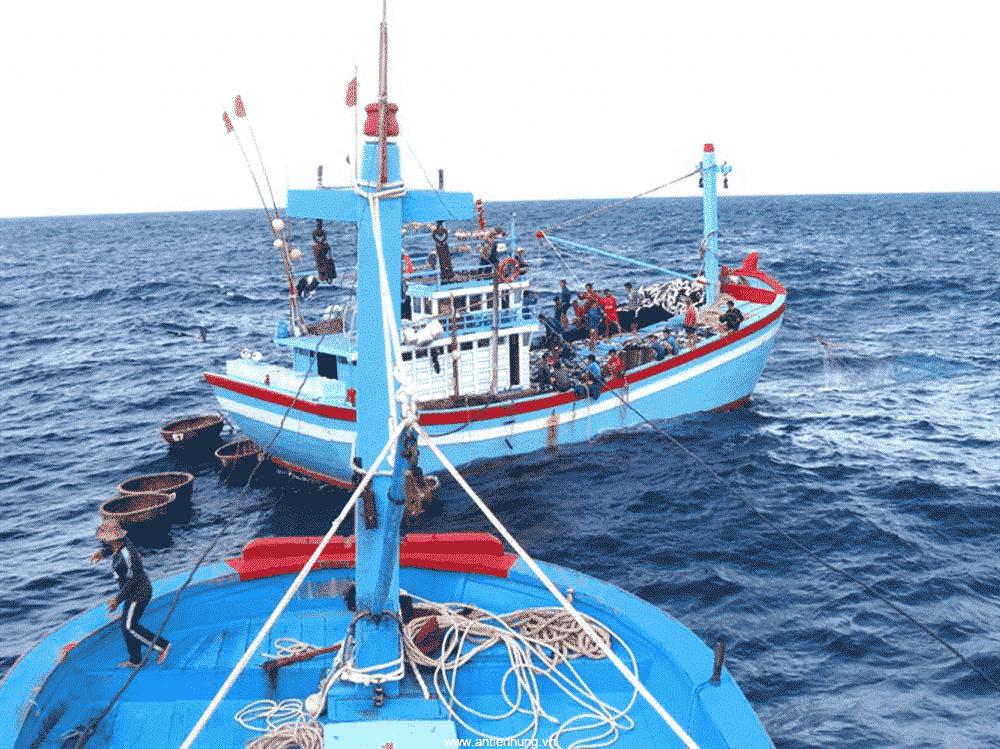 Nhiều công trình trên biển sử dụng sơn MUKI EPS (20 LÍT)