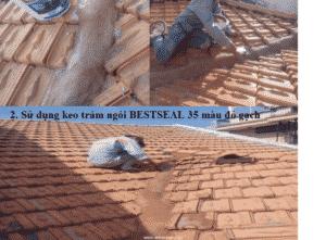 Thi công keo trét mạch ngói BestSeal 35