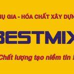 Logo công ty Bestmix